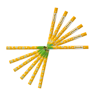 Brownies Pencil Pack (6pk)