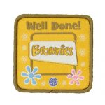 brownie well done badge